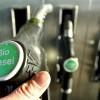 Biodiesel: la provincia pierde miles de millones por las trabas que impone EEUU